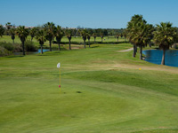 Tee Times Open Championship Tournament